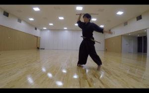 二天一流剣術の型「躱打」1